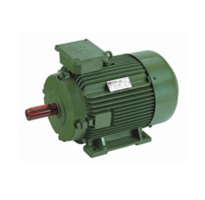 Have More Conveniences of Using Electric Motors